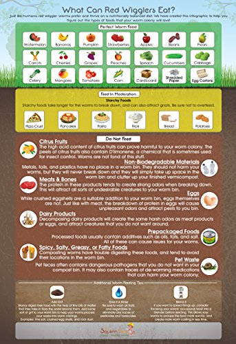 """What Can Red Wigglers Eat?"" Infographic Refrigerator Magnet for Live Red Wiggler Worm Composting Bins - An Essential Accessory to Any Worm Farm Starter Kit - Perfect For Kids & Adults"