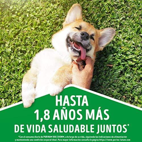 Dog Chow Comida para Perro Longevidad Senior Edad Madura Todos los Tamaños con Extralife 7.5 kg 4