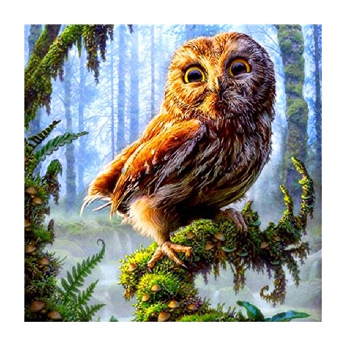 5D Diamond Painting DIY Handmade Round Diamond Embroidery Painting Rhinestone Cross-Stitching Set Animal Owl