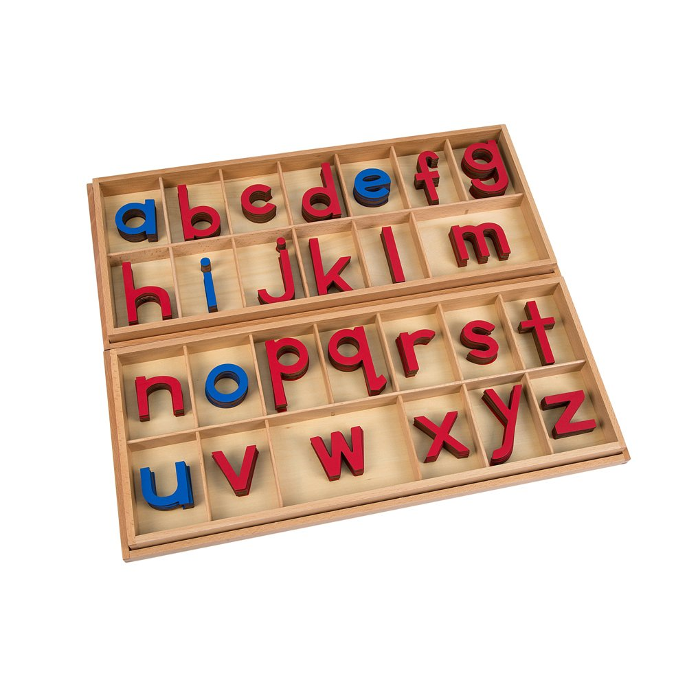 Montessori Large Movable Alphabet (Red & Blue)