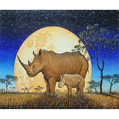 Paint by Number Kits - Moon Rhinos 16x20 Inch Linen Canvas Paintworks - Digital Oil Painting Canvas Kits for Adults Children Kids Decorations Gifts (with Frame)