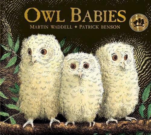 Download Owl Babies ebook