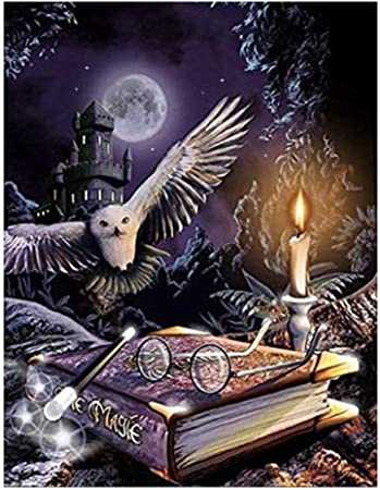 Kimily DIY Paint by Numbers for Adults Kids Harry Potter Owl Paint by Numbers Halloween Owl DIY Painting Acrylic Paint by Numbers Painting Kit Home Wall Living Room Bedroom Décor Halloween Magic Owl