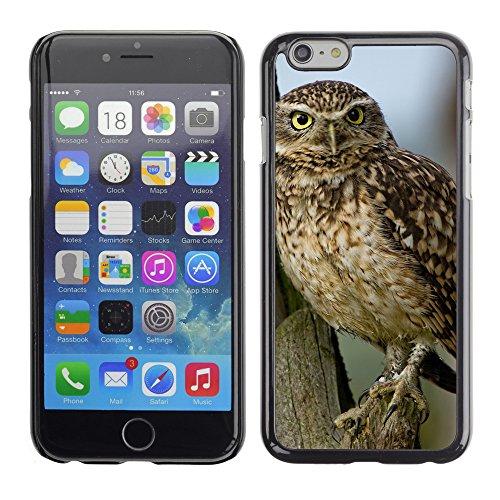 """Premio Sottile Slim Cassa Custodia Case Cover Shell // F00017164 Petite chouette // Apple iPhone 6 6S 6G 4.7"""""""