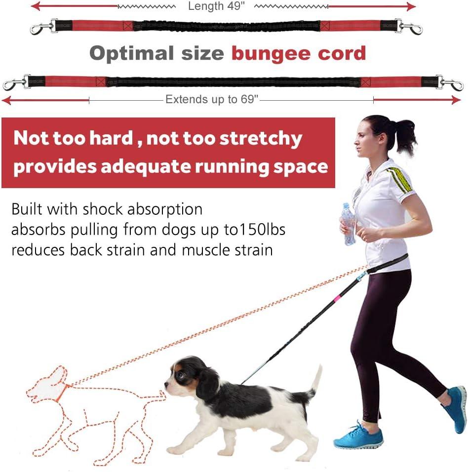 LANNEY Correa para perro manos libres para correr, caminar ...