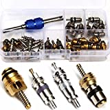 R12 R134A A/C Valve Stem Cores Remover Set Box Kit Car Air Conditioning Repair (39 Pcs Valve Core+1 Pcs Remover Tool)