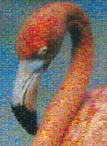 Buffalo Games Photomosaic, Flamingo - 1000pc Jigsaw - Puzzle 1000pc Photomosaic