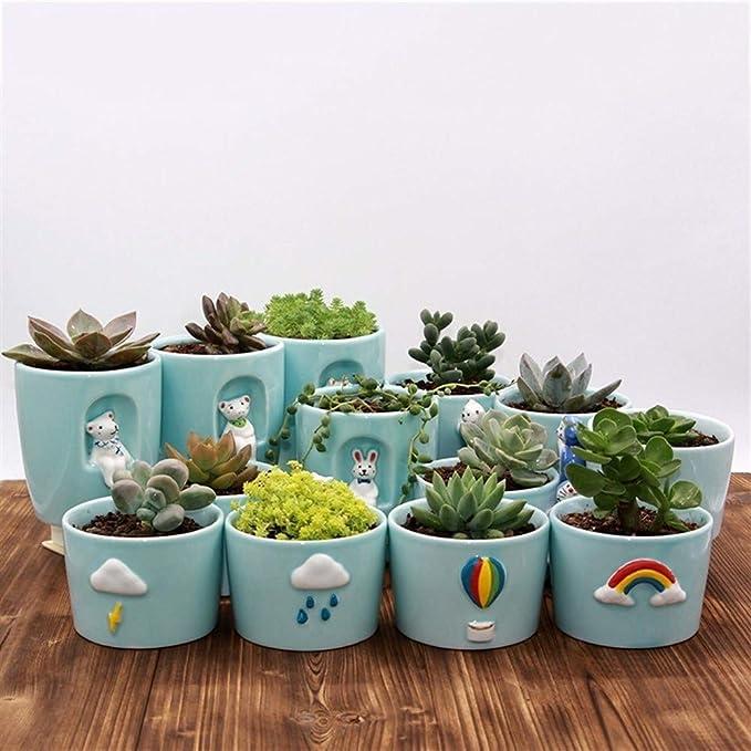 Ceramica de cactushttps://amzn.to/2XSLeic