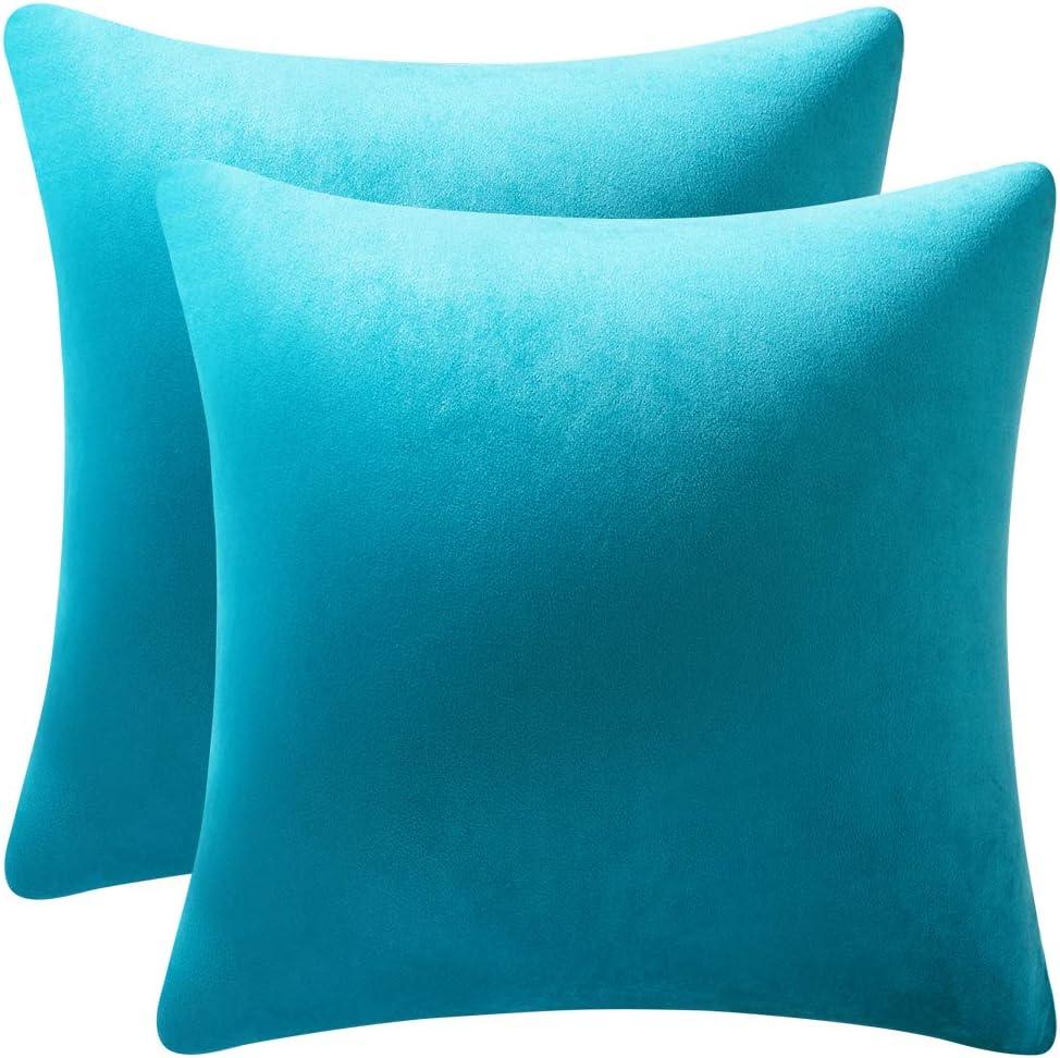 DEZENE Throw Pillow Cases 20x20 Turquoise: 2 Pack Cozy Soft Velvet Square Decorative Pillow Covers for Farmhouse Home Decor