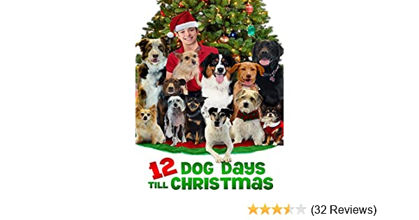 12 Dog Days Till Christmas.Watch 12 Dog Days Till Christmas Prime Video