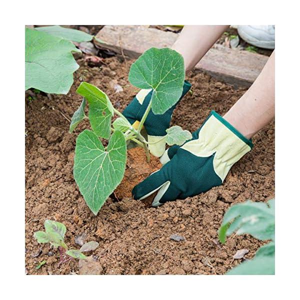 Navaris Guanti da Giardinaggio in Pelle - Guanto da Lavoro in Vera Pelle Suina per Potatura Piante Alberi Orto e… 2 spesavip