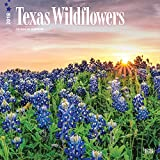 Texas Wildflowers 2018 12 x 12 Inch Monthly Square Wall Calendar, USA United States of America Southwest State Nature