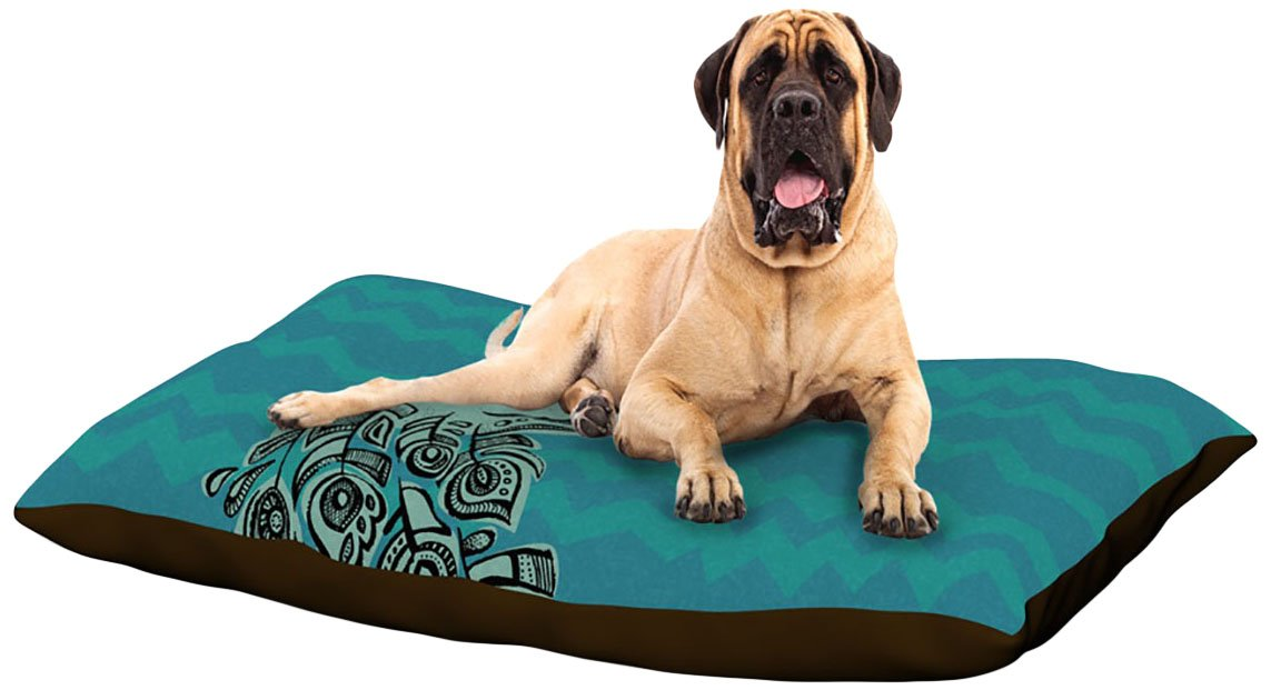 Peacock Teal X-Large 40\ Peacock Teal X-Large 40\ Kess InHouse Brienne Jepkema Peacock bluee  Dog Bed, 50 by 60-Inch, Teal Green