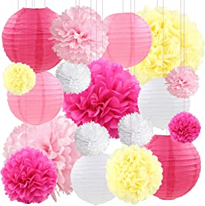 Pink White Tissue Paper Lanterns Decorative Flowers Pom Poms Wedding Baby Shower Party Decorations, 18 pcs