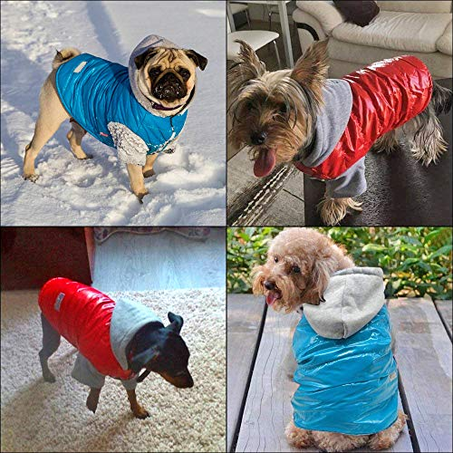 c15c9966d24c Beirui Dog Doggy Clothes Cold Weather Coat - Waterproof Windproof Dog  Jacket Dog Snowsuit - Warm