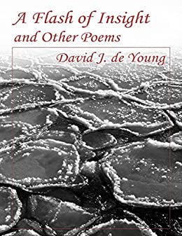 A Flash of Insight and Other Poems by [de Young, David J.]