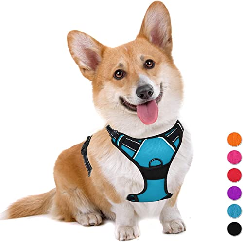 BARKBAY-No-Pull-Dog-Harness-Large-Step-in-Reflective-Dog-Harness-with-Front-Clip-and-Easy-Control-Handle-for-Walking-Training-Running