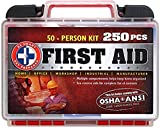 'Be Smart Get Prepared 250 Piece First Aid Kit, Exceeds OSHA ANSI Standards for 50 People - Office, Home, Car, School, Emergency, Survival, Camping,...