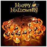 eccbox Halloween Christmas Decorations Battery Operated LED Fairy String Lights,20 LED Lights Patio Lawn Garden Party Holiday Decorations (Pumpkins Lights, Warm White)