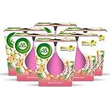 Air Wick Feel-Good Geurkaars - Geur: Bloemenweide - Bevat natuurlijke etherische oliën - 6 x geurkaarsen in roze