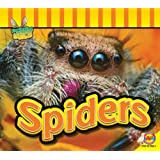 Spiders (Fascinating Insects)