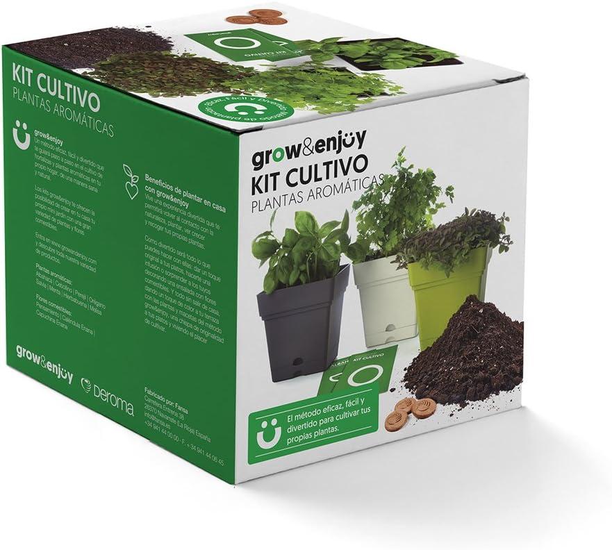 Grow & Enjoy Samba - Kit de cultivo Melisa, maceta cuadro, 18 cm, color verde claro