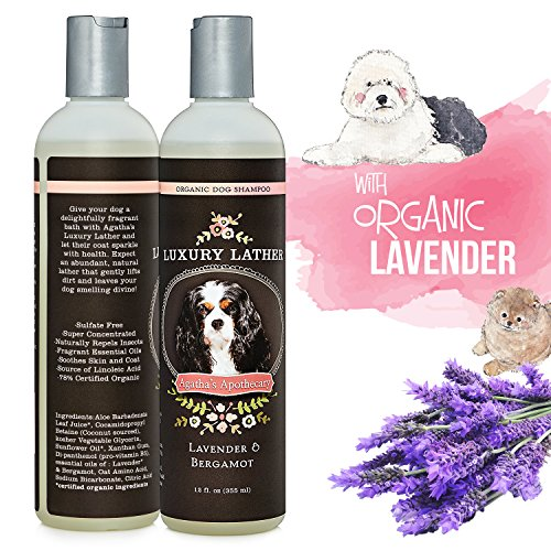 Organic Dog Shampoo Soap Free- Luxury Lather Organic Dog Shampoo-All Natural Sunflower Oil Oatmeal Lavender Bergamot EO's Lather Over Time Helps Reduce Itching Excess Shedding 12 oz. Bottle Luxury Dog Shampoo