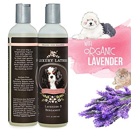 Shampoo All Sunflower Lavender Bergamot Shedding product image