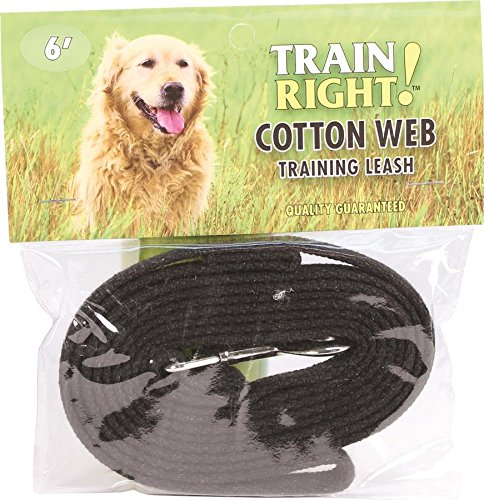 (Coastal Pet Products DCP906HBLK Cotton Web Collar Lead for Dogs, 5/8 by 6-Feet,)