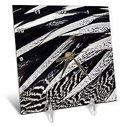 3dRose Danita Delimont - Feathers - Anderson Pheasant feather pattern - 6x6 Desk Clock (dc_250258_1)