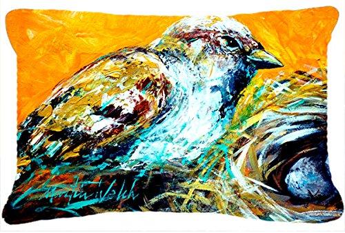 Birdie Canvas - Caroline's Treasures MW1158PW1216 Look at the Birdie Canvas Fabric Decorative Pillow, Large, Multicolor