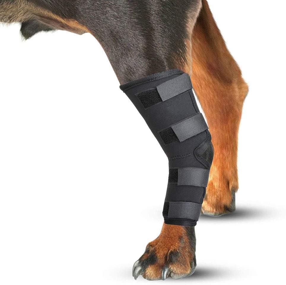 2 Juegos De Rodilleras para Mascotas para El Apoyo del Perro, Soportes para Las Patas Traseras del Perro para Ayudar A Tratar Los Esguinces Causados por La Artritis (1 Par)(M, Black)