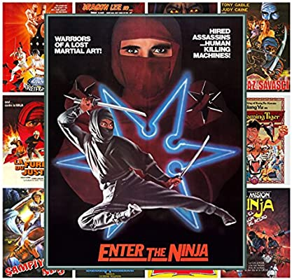 Amazon.com: Mini Posters Set [13 posters 8x11] Ninja Kung Fu ...