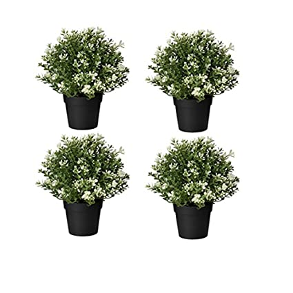 Buy Ikea Artificial Potted Plant Thyme 9 5 Inch 4 Online At Low Prices In India Amazon In