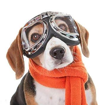Gafas de sol para perros Gafas para perros Gafas de esquí ...