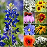 Bulk Package of 30,000 Seeds, Texas / Oklahoma Wildflower Mixture (100% Pure Live Seed) Non-GMO Seeds by Seed Needs …
