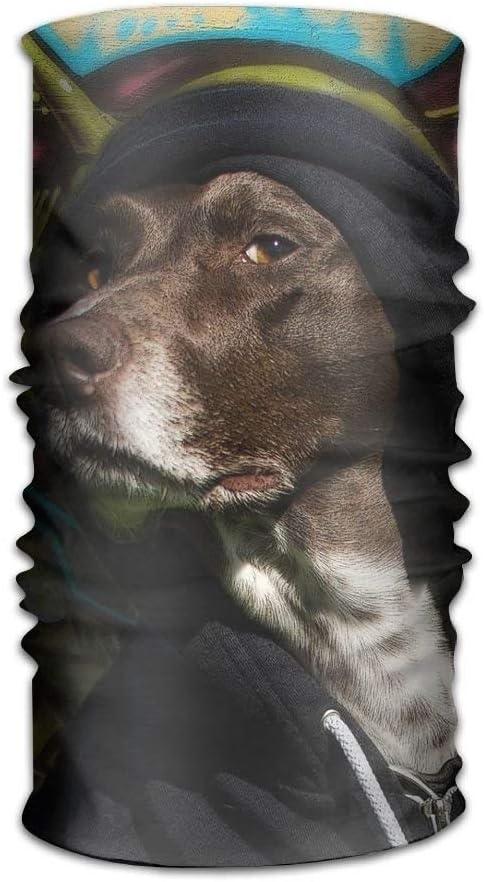 uanglongping Headwear Headband Dogs Paint Grafitti Head Scarf Wrap Sweatband Sport Headscarves For Men Women