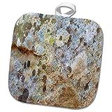 3dRose TDSwhite – Rock Photos - Rock Surface - 8x8 Potholder (phl_281922_1)