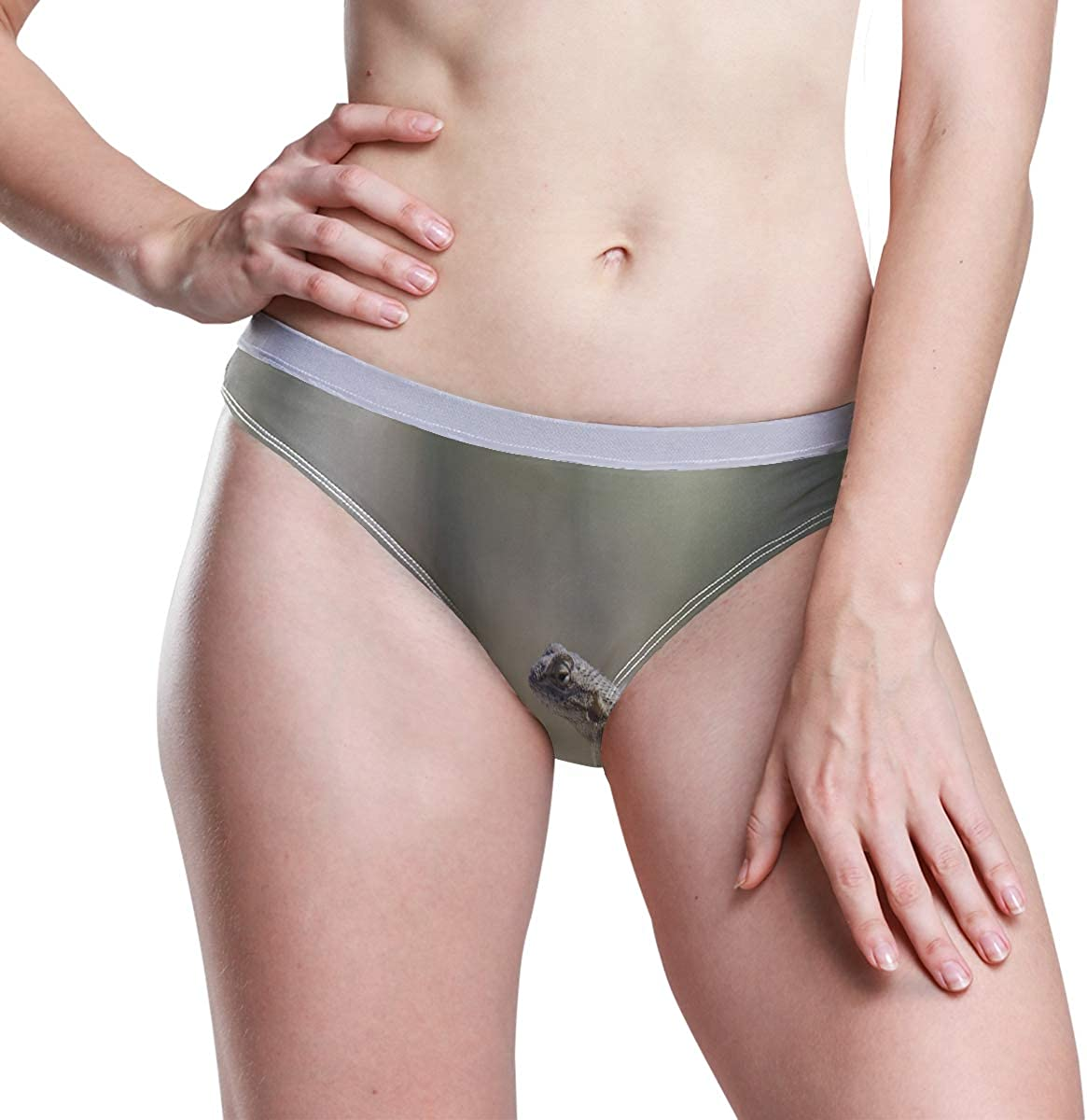 OuLian Lizard Womens Basic Panties Underwear Stretch Hipster Brief Panty