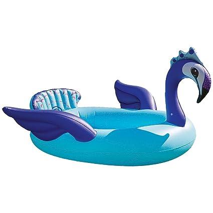 Amazon.com: Sol placeres pavo real pulverizador piscina ...