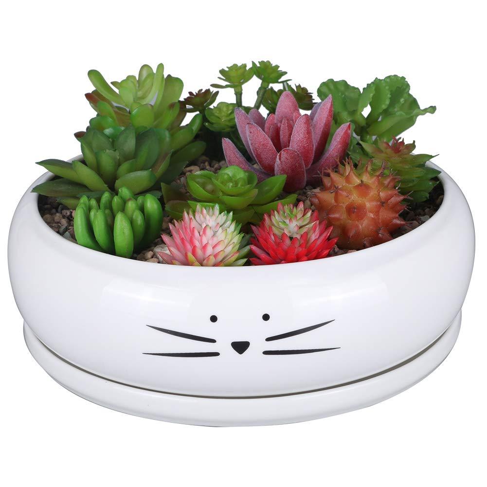 Koolkatkoo 8 Inch Large Cute Cat Ceramic Succulent Planter Pots with Removable Saucer Unique Porcelain Cactus Planters Decorative Flower Pot for Cat Lovers White