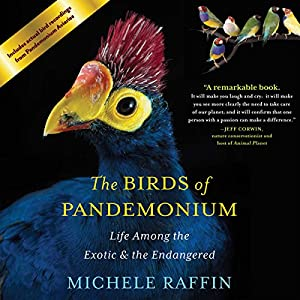 Birds of Pandemonium Audiobook