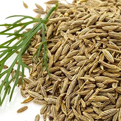 Cumin Herb Seeds, 300+ Premium Heirloom Seeds, Grow Your own Cumin Herb Plant Inside, Outside, or on Your Patio!, (Isla's Garden Seeds), 85% Germination Rates : Garden & Outdoor
