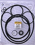 Pentair Challenger High PSI, High Flow and Waterfall, Square Housing Gasket, Complete Pump O-Ring Rebuild Kit