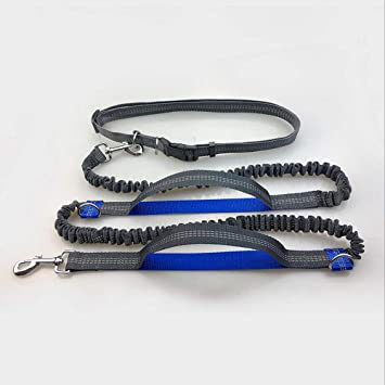 GDSZ Cinturón Ajustable para La Cintura con Correa De Perro ...