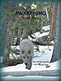 Awakening (The White Stealth Clan Book 1)