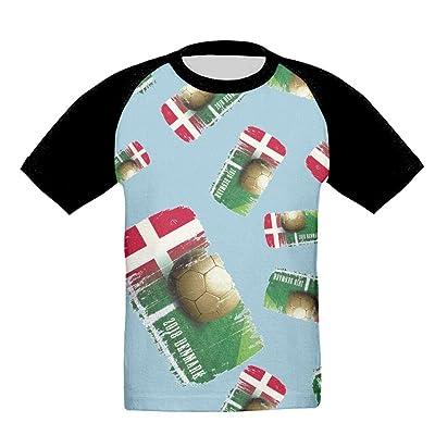 Denmark Football 2018 Children's Athletic Crew-Neck Raglan Short Sleeve T-Shirts