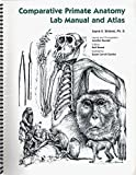 Comparitive Primate Anatomy 9781932583045