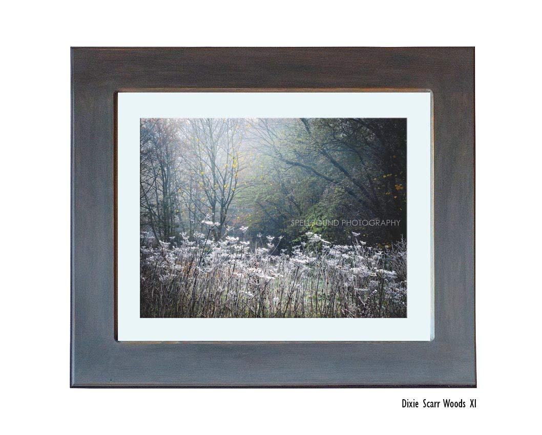 Fairy tale Woodlands fine art print
