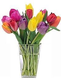 Stargazer Barn - Happy Bouquet - 15 Stems Of Fresh Tulips in Rainbow Assortment With Clear Vase - Farm Fresh
